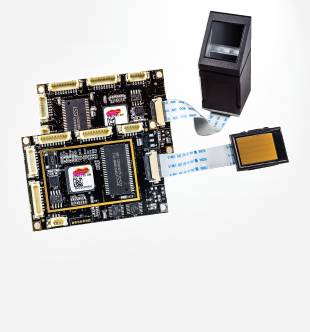 Embedded Modules